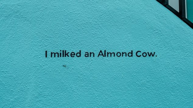 I milked an almond cow graffiti - how to survive veganuary guide